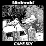 Quando la fantasia non ha limiti: ecco come unire una Game Boy Camera a un obiettivo Canon 9