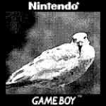 Quando la fantasia non ha limiti: ecco come unire una Game Boy Camera a un obiettivo Canon 10