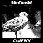 Quando la fantasia non ha limiti: ecco come unire una Game Boy Camera a un obiettivo Canon 11