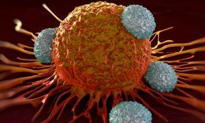 Vaccino per il cancro