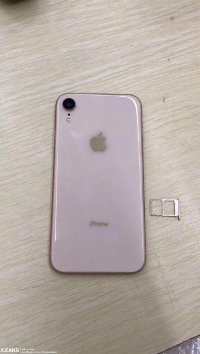 iPhone Xc si mostra in tante colorazioni con conferme sul supporto Dual SIM 2