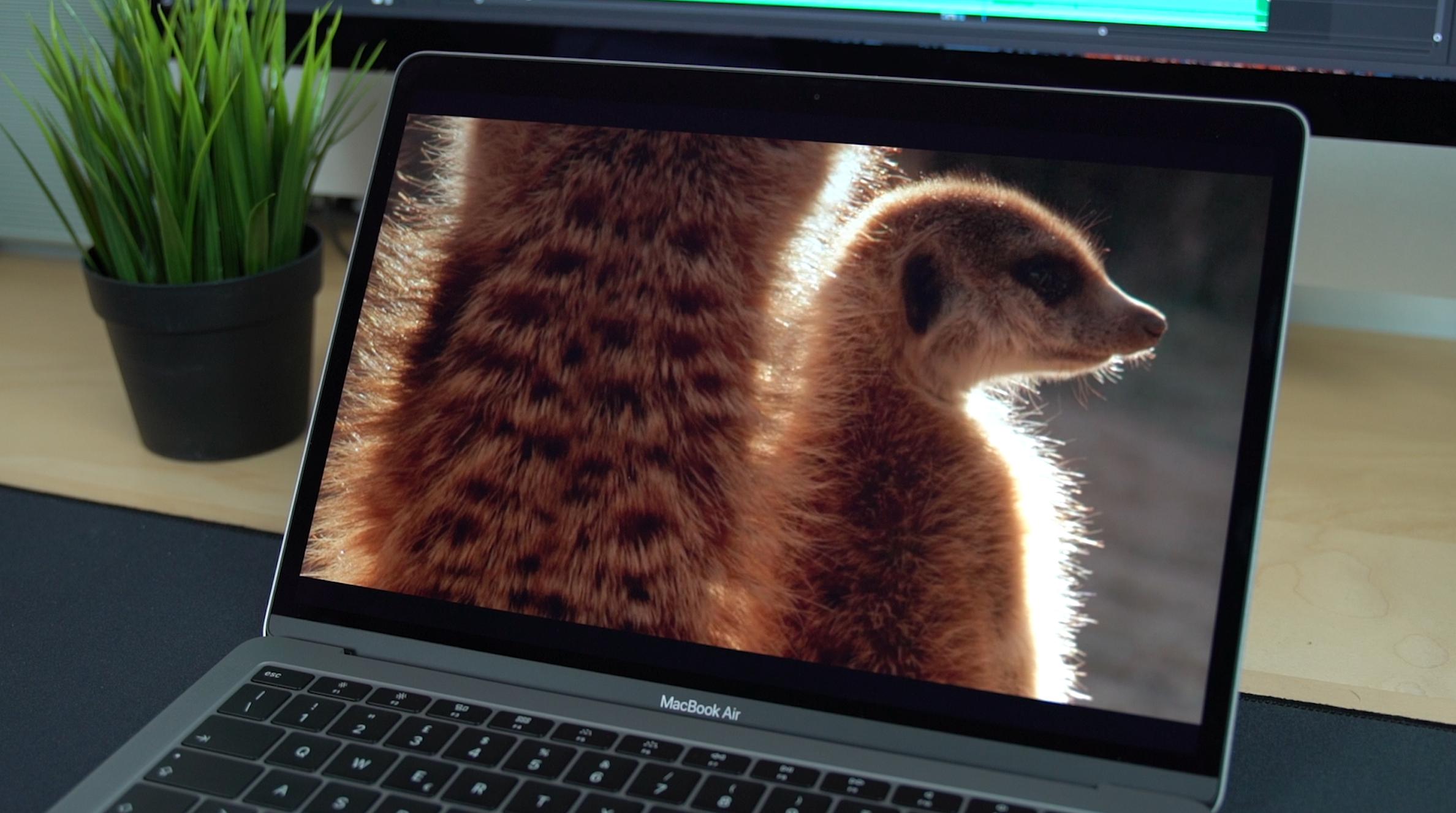 Recensione MacBook Air (2018): può sostituire un MacBook Pro 13? 2
