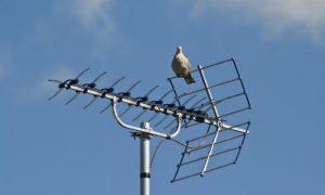 DVB-T2 incentivi