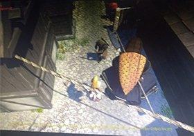 Assassin's Creed Ragnarok protagonista delle prime immagini 1