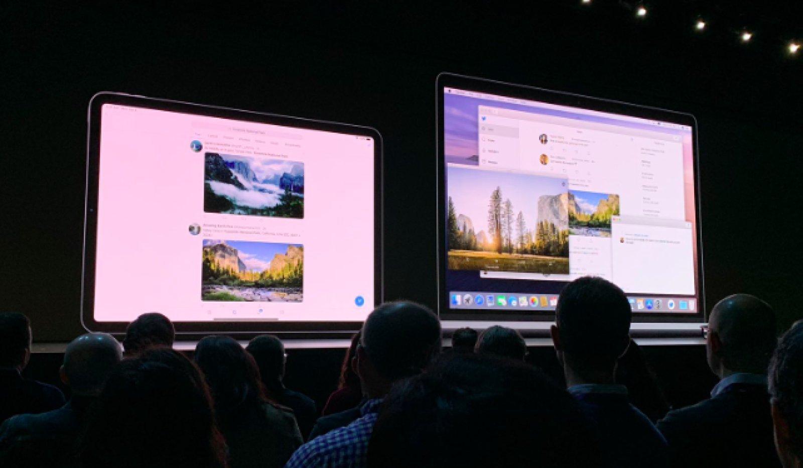 Twitter app macOS 10.15 Catalina