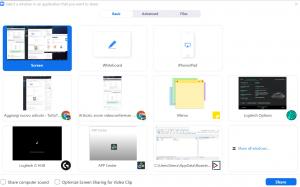 Opzioni avanzate Zoom: Share Screen