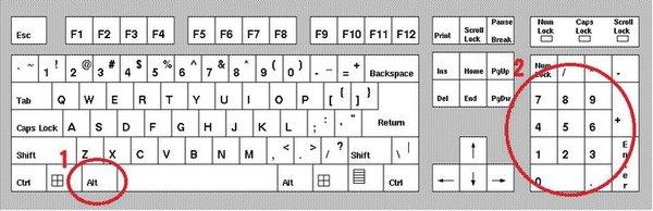 scrivere caratteri speciali ascii