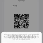 WhatsApp Beta iOS