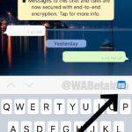 WhatsApp sta lavorando a nuove funzioni di ricerca e ottimizzazione 2