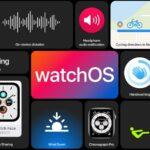 Apple presenta watchOS 7, con un mucchio di nuove funzioni 11