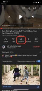 picture in picture ios 14 youtube