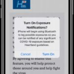 Apple e Google lanciano Exposure Notification Express per tracciare il COVID-19 4