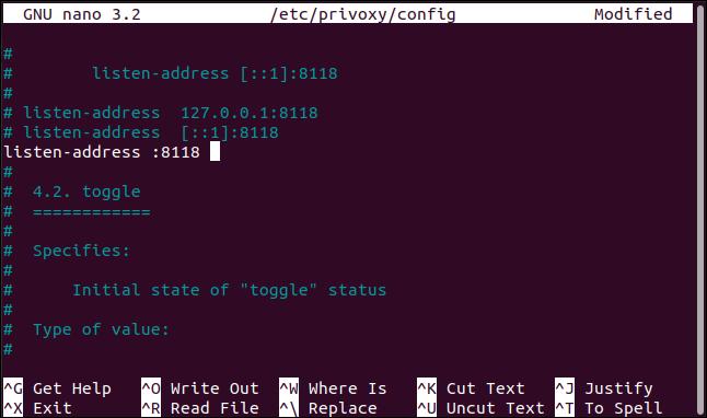 raspberry pi privoxy configuration