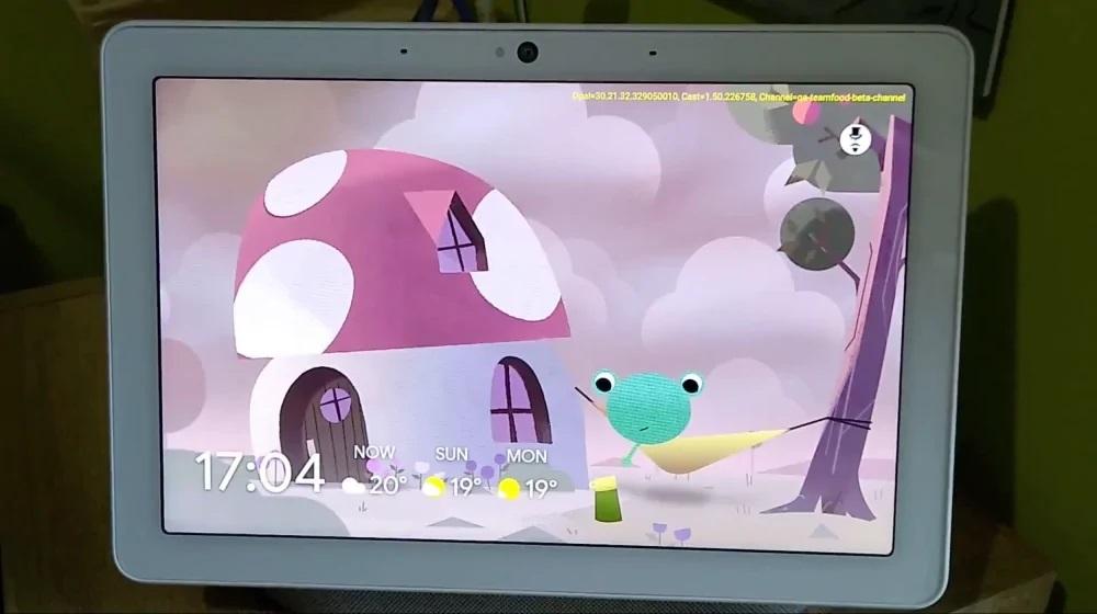 Google Froggy rana