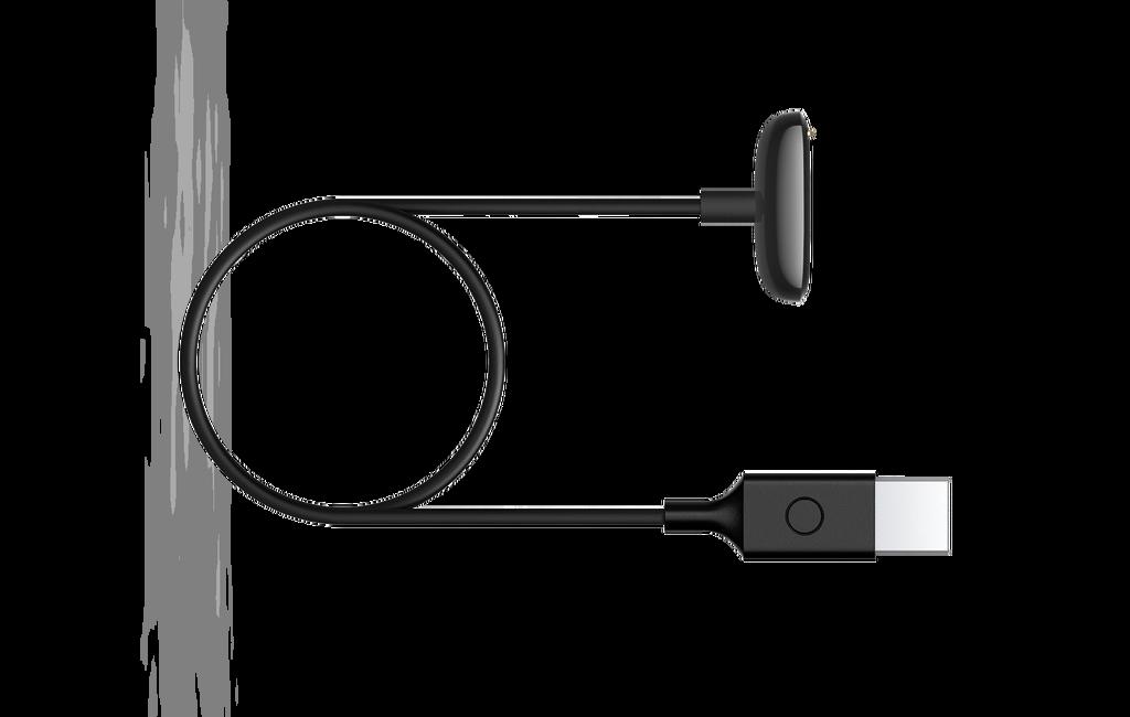 Fitbit sta finalmente utilizzando cavi di ricarica USB-C, a partire da Luxe 1