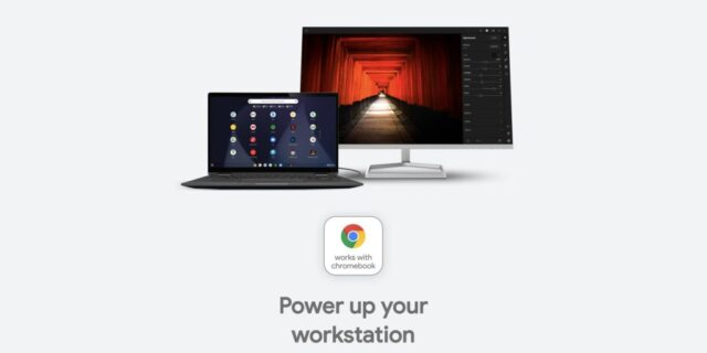 Works With Chromebook