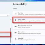 Come disattivare la trasparenza su Windows 11 accessibilità